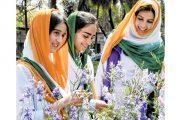'কাশ্মীরি গার্ল' গুগল সার্চে ঝাঁপিয়ে পড়েছে ভারতীয়রা