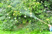 ভেজাল খাদ্য প্রতিরোধে পরিবেশ বাঁচাও আন্দোলন (পবা)'র ১১ দফা প্রস্তাব