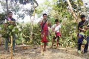 ঝিমাই পুঞ্জির বিরোধ নিস্পত্তিতে সরকারকে এগিয়ে আসার আহ্বান