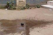 মধুর ক্যান্টিনের সামনে ককটেল 'বিস্ফোরণ'