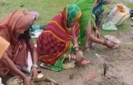 বিহারে 'করোনা দেবী'র পূজায় ভারতীয় নারীরা