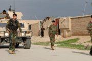 আফগানিস্তানে সংঘর্ষে ৮০ সেনাসহ নিহত দুই শতাধিক